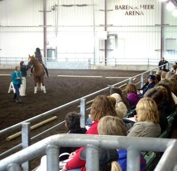 Our Facility | Leatherdale Equine Center - University of